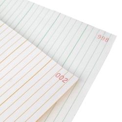 Papier 240×300×500 - Bioscript 2000