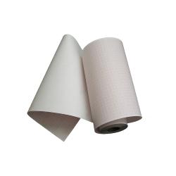 Papier 150×44 - Bioset 3000
